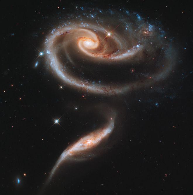 Happy Birthday, Hubble Telescope | The Litter Box